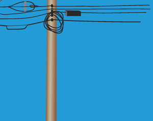 The bottom half of a utility pole contains communication lines.
